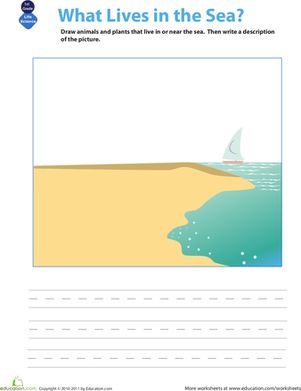 First Grade Handwriting Life Science Worksheets: What Lives in the Sea