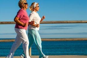 Pour entretenir notre cerveau et sa neurogenèse, il faut pratiquer l'exercice physique, de manière soutenue, confirme cette étude de l'Académie de Finlande. Avec l'exercice aérobie il est en effet possible -et constaté ici- d'augmenter la réserve de neurones de l'hippocampe et donc d'améliorer sa capacité d'apprentissage et cela même à l'âge adulte. Des conclusions présentées dans le