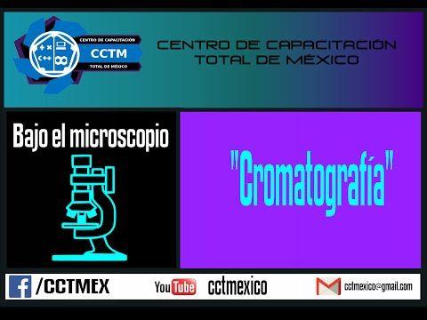 Bajo el microscopio: Cromatografía en papel filtro - YouTube
