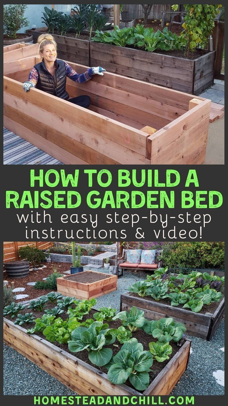 How to Build a Raised Garden Bed | 1000 in 2020 ...