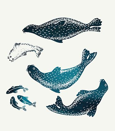 Noël Nature Enchantée - Seals, baby seals and fishes - Black & petrol blue ink - illustration by Amandine Delaunay // Halley des fontaines Agency for Nature & Découverte