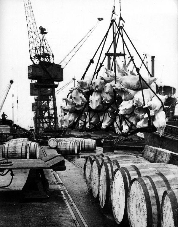 Unloading in the London Docks. Israel Bidermanas - 1952 -