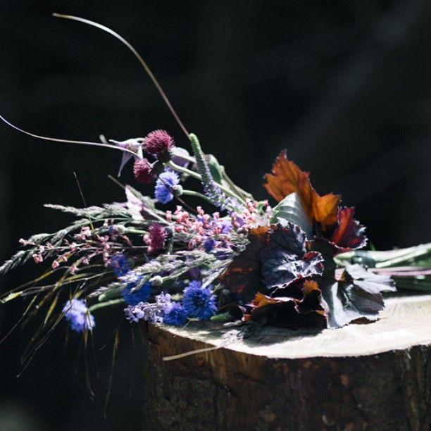 Cornflower,Hosta,Veronica & Heuchera flower bouquet for bridesmaids or bridal bouquet #wedding  #thegarden #thegardeneditorals image credit @dkilfeather