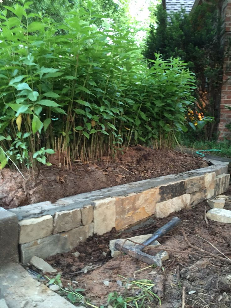 The 25+ Best Small Retaining Wall Ideas On Pinterest | Small Garden In  Front Of House, Small Front Garden Landscaping Ideas And Small Garden For  Small House
