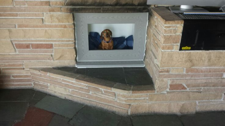 Dog House Ideas For  Dogs