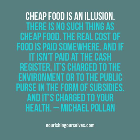 Cheap food is an illusion. There is no such thing as cheap food. The real cost of food is paid somewhere and if it isn't paid at the cash register, it's charged to the environment or to the public purse in the form of subsidies. And it's charged to your health. -Michael Pollan