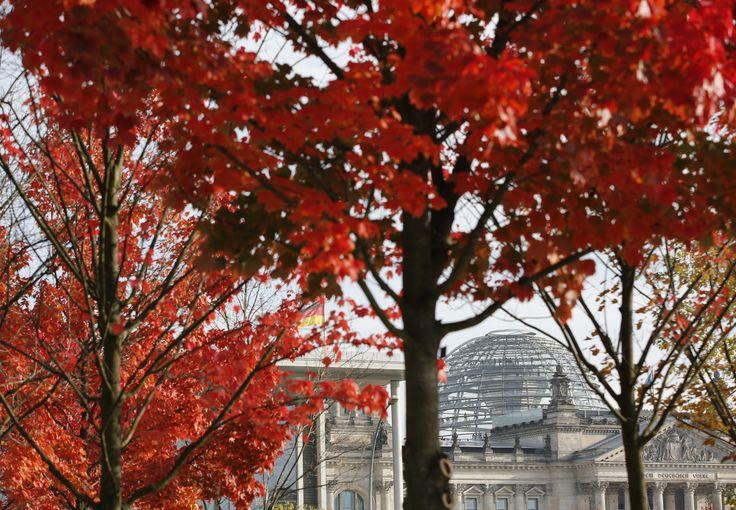 Reichstag, atau gedung majelis rendah parlemen Jerman, terlihat di antara daun-daun berwarna merah saat musim gugur di Berlin.