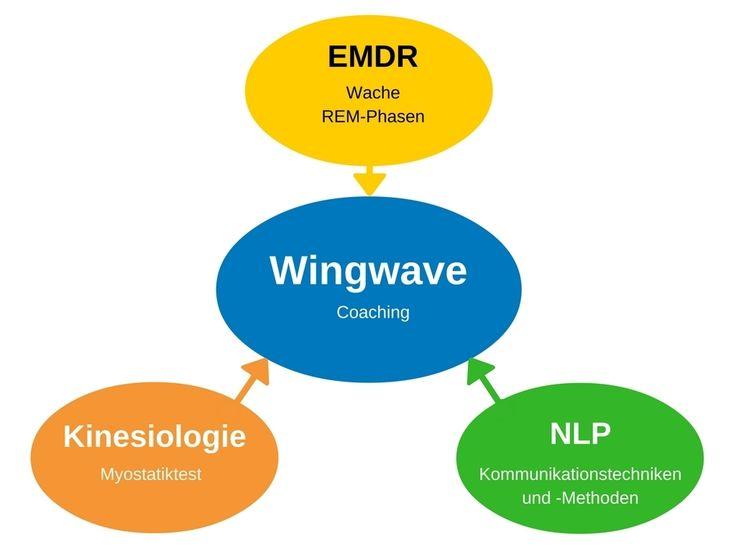 Wingwave Coaching Leipzig - die Bestandteile von Wingwave: EMDR, Kinesiologie und NLP