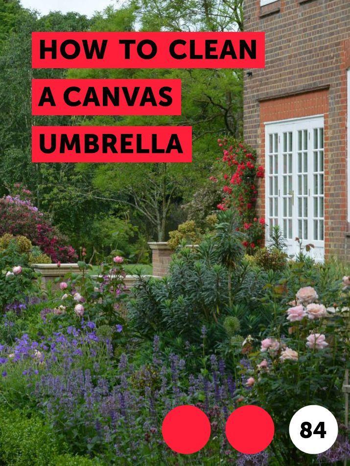 How To Clean A Canvas Umbrella Garden Furniture Hibiscus Plant