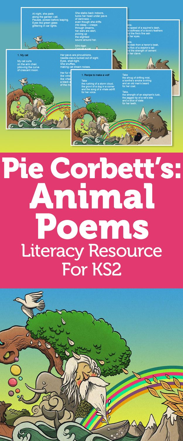 Pie Corbett Animal Poems KS2 – Wordplay, Metaphor And Descriptive Language With Zoological Poetry