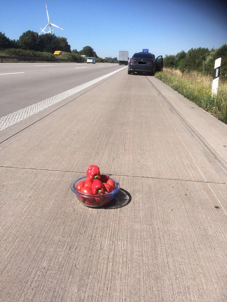 Lithuanian driver didnt have a warning triangle so he put on the highway a bowl with tomatoes and paprikas. German policemen were so amused they didnt fine the driver but took this photo instead.