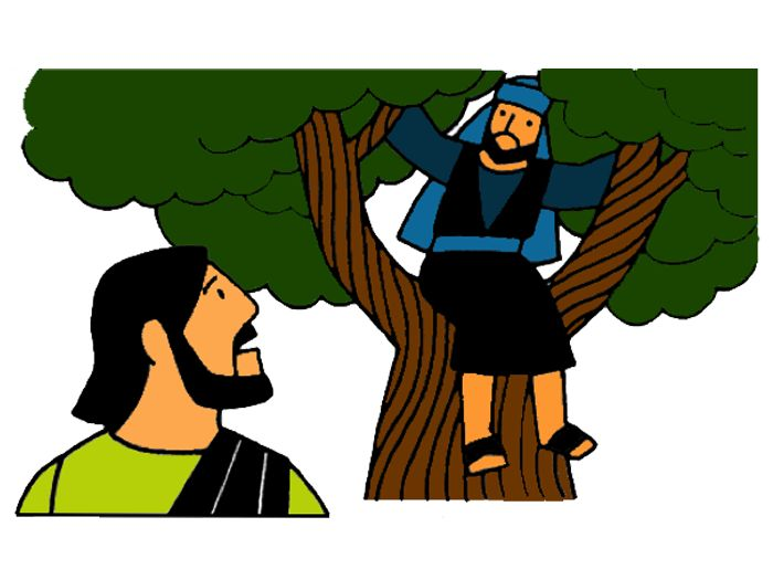 25 best zacchaeus images on pinterest sunday school zacchaeus rh pinterest com  jesus and zacchaeus clipart