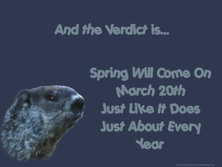 Groundhog Pictures Free | Groundhog Day Wallpaper Background for Desktop Featuring a Funny ...