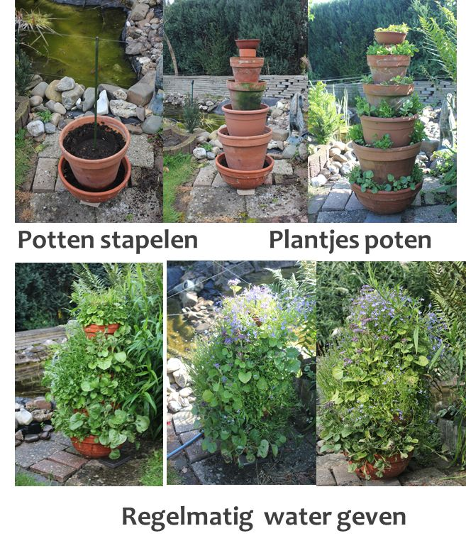 Oude potten hergebruiken in de tuin.