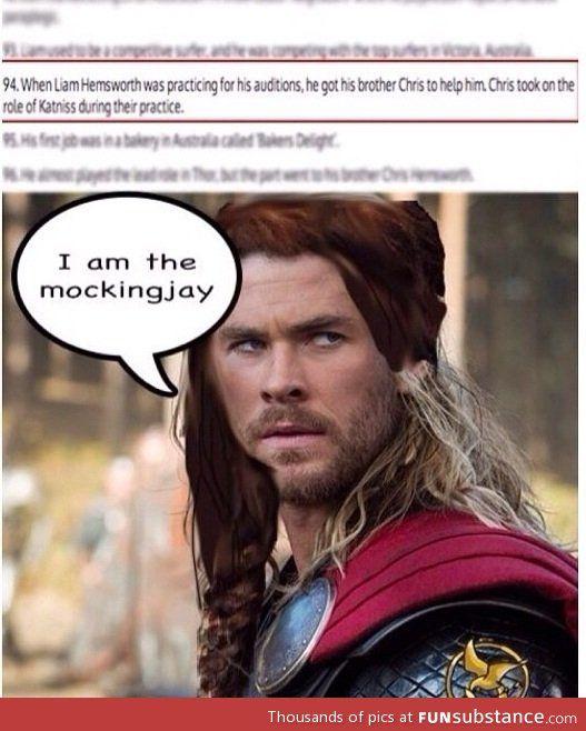 Chris Hemsworth is the mockingjay