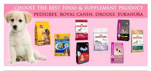 Dog supplies online india