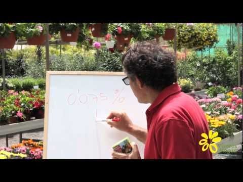 Calculo dosificación productos fitosanitarios - YouTube
