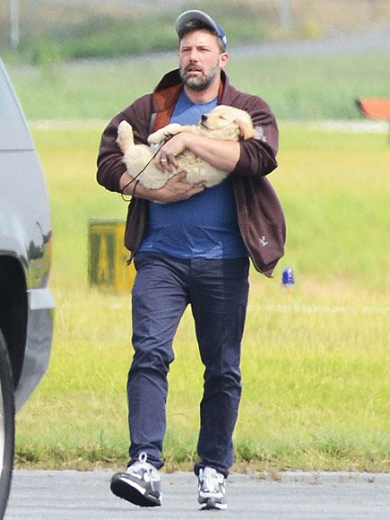 See Ben Affleck Bring His Adorable 'New Family Dog' to Atlanta http://www.people.com/article/ben-affeck-atlanta-visit-puppy-jennifer-garner-split