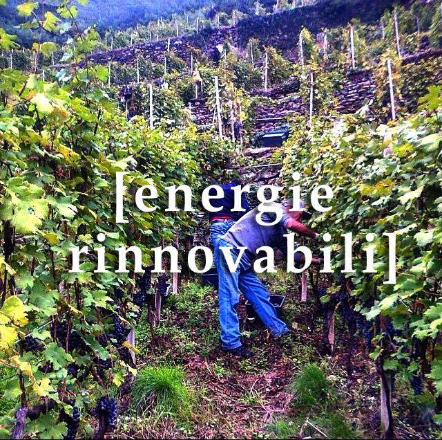 Un sistema elettrico più affidabile, flessibile, sicuro ed efficiente, in grado di: - far dialogare produttori e consumatori, e farli partecipare attivamente al processo di produzione dell'energia; - accogliere l'energia non programmabile (fonti rinnovabili); - conciliare sistemi tradizionali di generazione centralizzati con quelli distribuiti, tipici delle fonti rinnovabili; - anticipare le esigenze degli utenti finali; - garantire ai fruitori un riscontro dei consumi energetici.