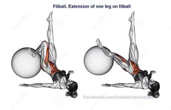 Extension of one leg on fitball
