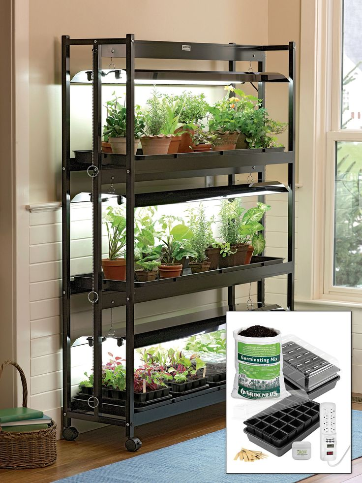 15 best indoor gardening images on pinterest indoor gardening 64900 large t 5 grow lights seedstarting kit grow lights made in the workwithnaturefo