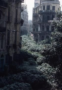 abandoned city... The Green Line demarcation zone - Beirut, 1982