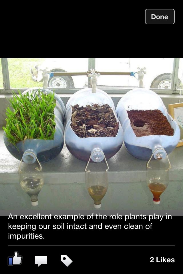 What an awesome science project!!!