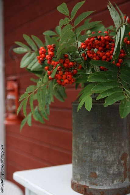 Not to feminine, nice red and rustic metal