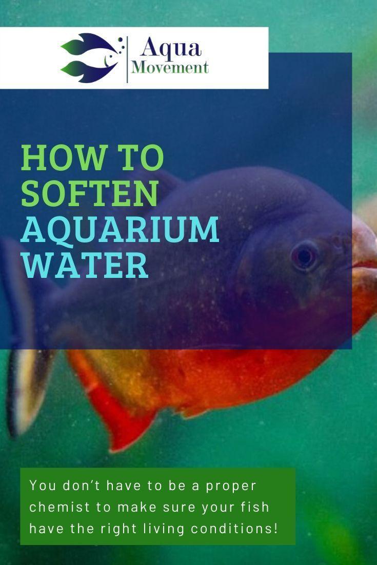 5 Ways On How To Soften Aquarium Water Aqua Movement In 2020 Fresh Water Fish Tank Aquarium Fish Tank