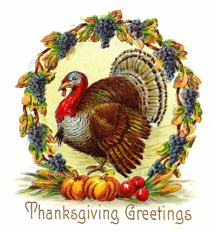 Antique Images: Free Thanksgiving Day Graphic: Thanksgiving Turkey with Wreath of Purple Grapes