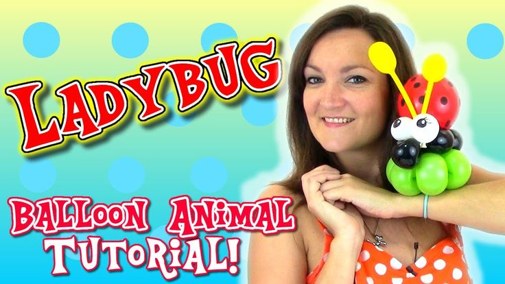 Easy LadyBug Balloon Animal tutorial with Holly the Twister Sister!
