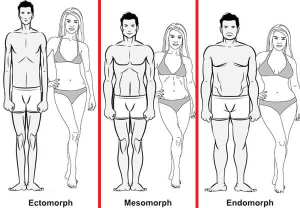 The Best Diets and Workouts for Your Body Type | Are you an ectomorph? Mesomorph? Endomorph? Does body type even matter? Read on to find out.