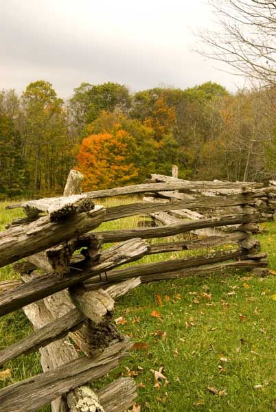 Stacked wood fence in autumn...and a farmer's wife will be heaving a sigh of relief as the gardening season comes to an end....altho' slaughtering time is on the horizon now!