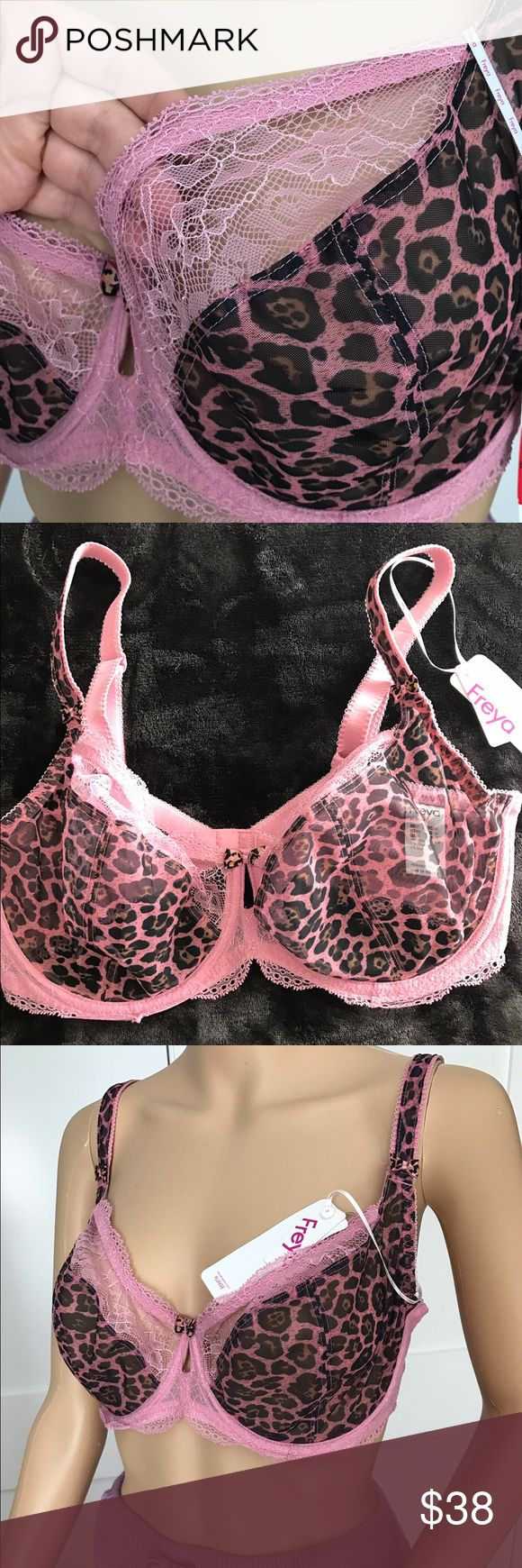 Freya Pink Lace and Leopard like Fabric Bra 34G Gorgeous Freya Bra ✨ combination of transparent leopard like fabric with pink lace ✨very sexy 😘.. New with tags! 🌟cups are not padded! ❤great for Valentine's Day, ladies ❤size 34G Freya Intimates & Sleepwear Bras