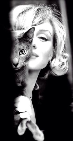 marylin and cat