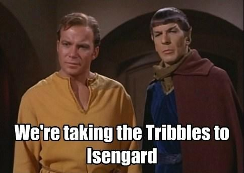 Star Trek / Lord of the Rings meme - Wonder how they figure out which tribble is carrying a ring...