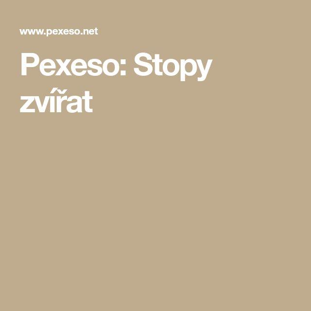 Pexeso: Stopy zvířat