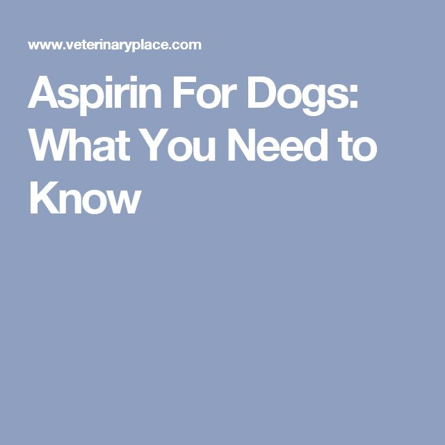 Giving Dogs Baby Aspirin For Pain
