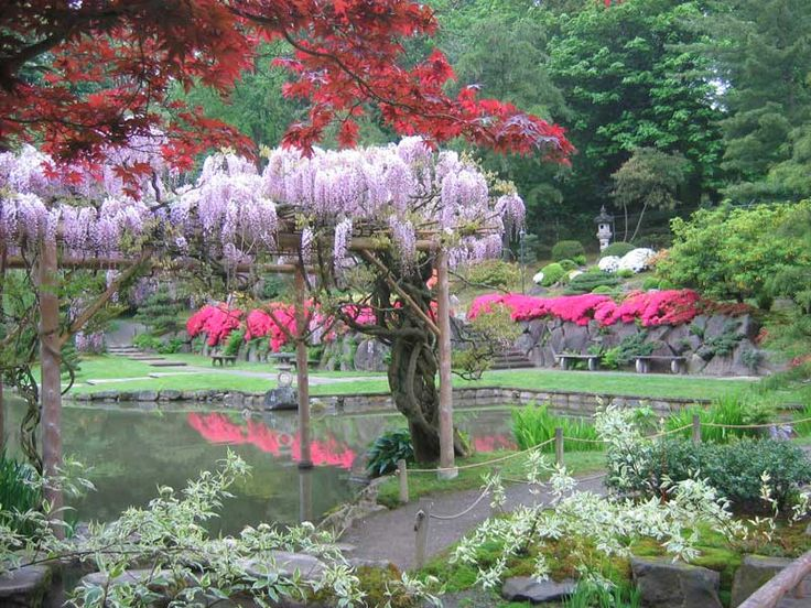 41 best Japanese garden images on Pinterest Japanese gardens