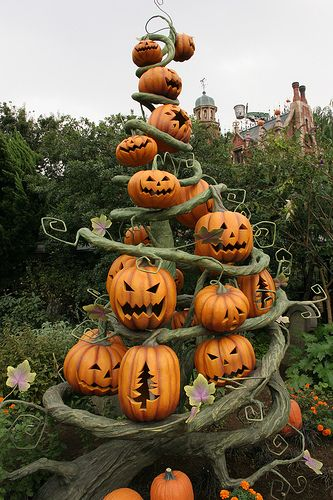 Isn't this a cool Halloween Pumpkin Display? This would look really neat out on the lawn with lights strung through the vines or battery operated tea lights inside each pumpkin.