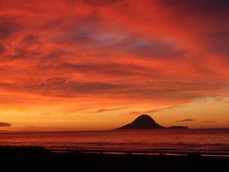 Bliss - Ohope Beach NZ