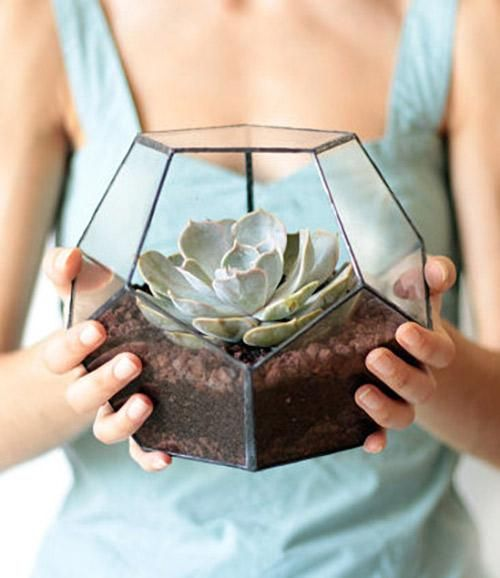 Any plant-lover would appreciate a handmade, soldered-glass terrarium. #etsyfinds