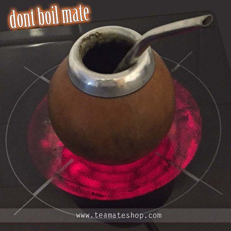 Prepare yerba mate,prepare mate in right way,how to prepare mate,yerba mate,mate loose weight,Yerba Mate Tea,online tea mate,online mate,mate guard,bombilla