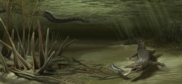 Battle of Ancient Beasts: Huge Crocodile vs. World's Largest Snake