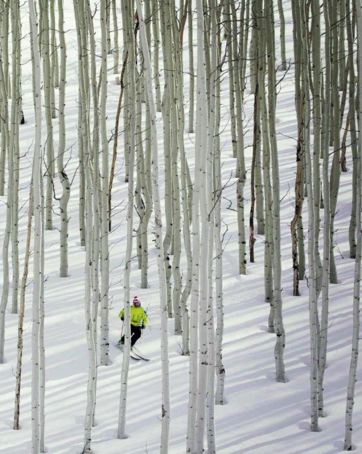 #1 North American Ski Resort: Deer Valley, Utah  www.alpineskiproperties.com