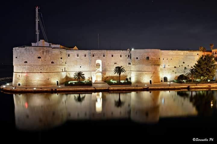 Taranto, paradiso dei delfini nelle immagini di Ulisse, Rai Tre. condotto da Alberto Angela: un viaggio emozionante tra mare, storia etesori della Magna Grecia
