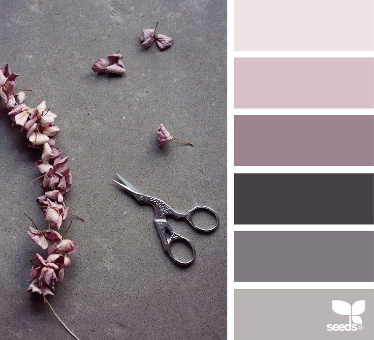Cut Flora - http://design-seeds.com/home/entry/cut-flora2