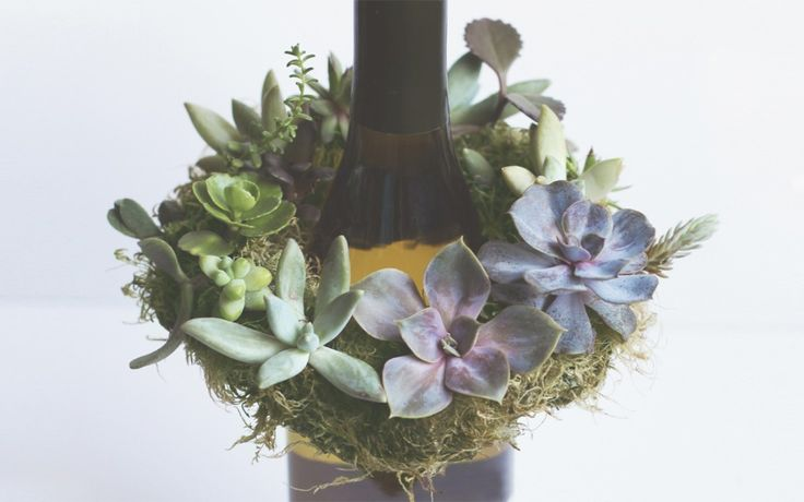 This gorgeous mini succulent wreath DIY is an enchanting way to capture a little bit of summer. Makes a terrific hostess, or housewarming gi...