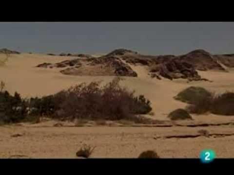 2/7 Grandes documentales - La Historia de los grandes vagabundos del des...