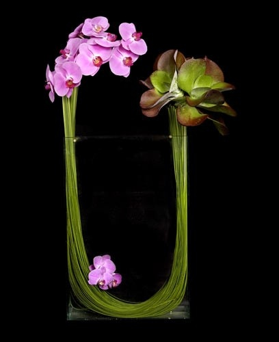 orchids provide rich textural contrast against succulents and ribbons of lily grass